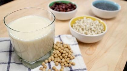 Homemade Soy Milk นำ้เต้าหู้