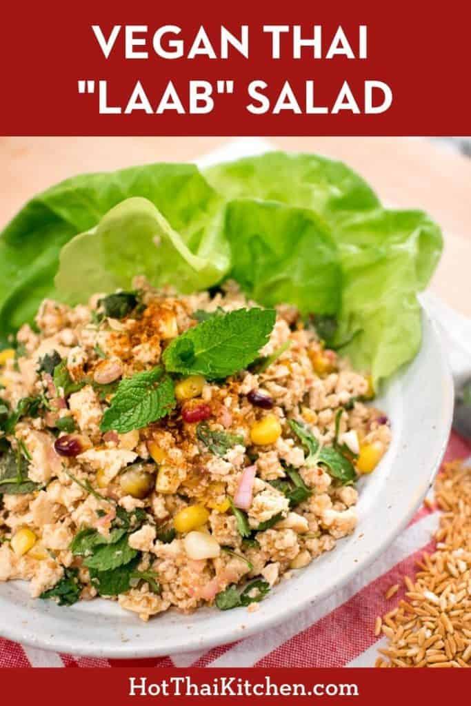 Classic Thai salad made vegan! Made from pressed tofu, corn, and a refreshing tart dressing. #thairecipe #vegan #hotthaikitchen