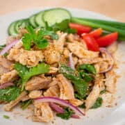 A plate of Thai roast turkey salad with cucumber and green onions on the side