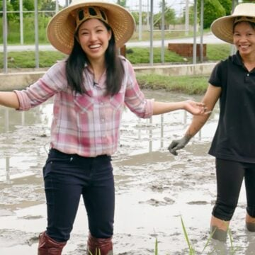 pailin standing in a rice paddy with another woman in the background